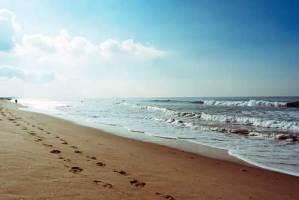 Ljeto na Krku (doba kad je na plaži više čikova nego kamenčića)