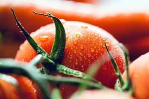 Rajčica i njena ljekovita svojstva