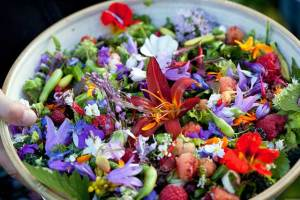 Kuhanje s cvijećem + recept za salatu od jestivog cvijeća