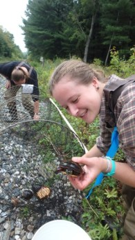 The Doris Duke Conservation Scholars Program (DDCSP) University of Massachusetts Amherst (UMASS) Turtle student