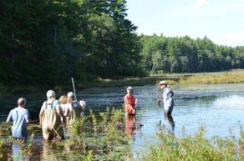 University of Massachusetts Amherst (UMASS) Doris Duke Conservation Scholars Program (DDCSP) water
