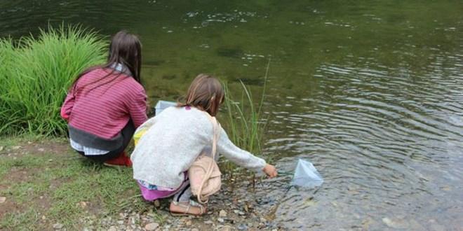 projecto rios