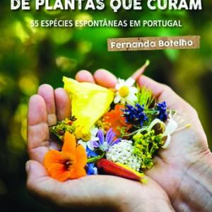 Eine Handvoll Heilpflanzen