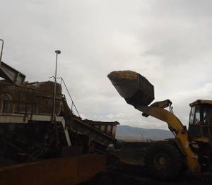 produção de biomassa
