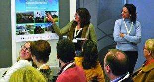 Inovar entre a desertificação e as temperaturas recorde