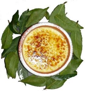 Crème Brullè de Louro