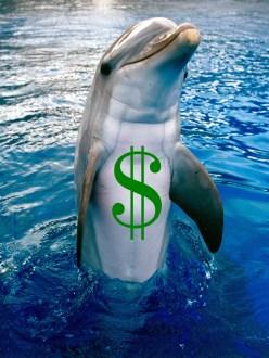 Industria-delfin