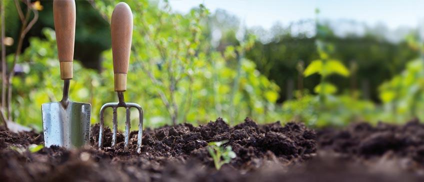 https://i1.wp.com/ecoalpispa.com/wp-content/uploads/2019/01/agriculturasostenible.jpg?fit=848%2C364&ssl=1
