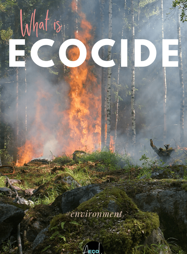ecocide
