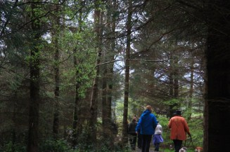 Hollywood Earth Day 2014! Thanks to Green Sod Ireland and Mary White and all who shared the walk too