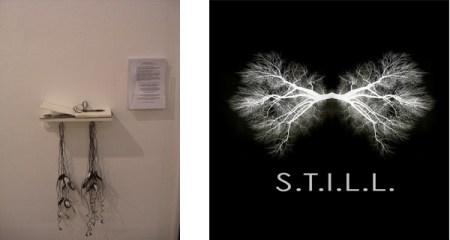 Samantha Clark: S.T.I.L.L. : A project for Gentle Actions: Art Ecology Actions Kunstnernes Hus, Oslo, Norway Oct/Nov 2010