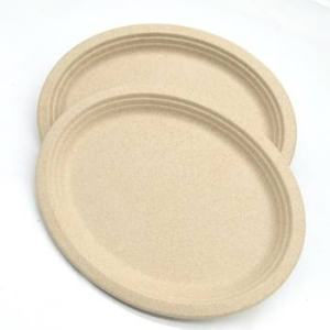 7 Inches Round Biodegradable Cane Fibre Food Plate