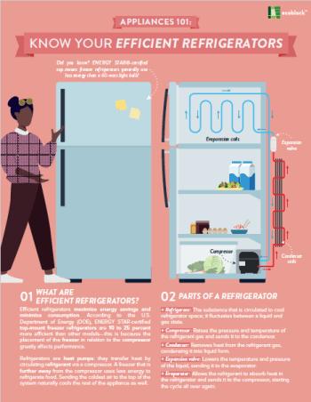 Appliances 101: Efficient Refrigerators