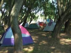 camping a pleno