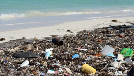 garbage-beach-1