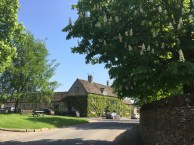 Southrop Village with the Chestnuts in bloom