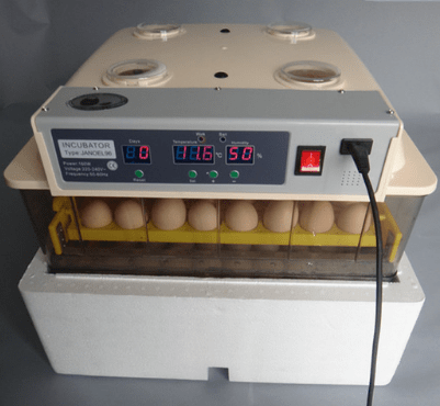 96 chiecken eggs incubator