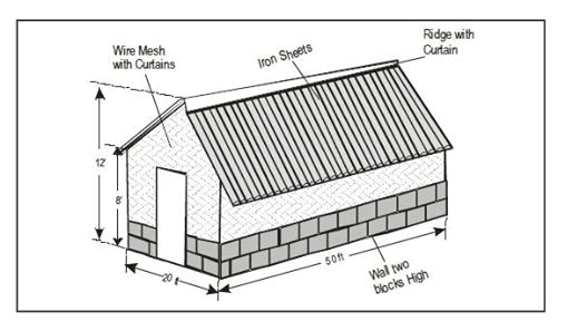 How To Construct A Chicken House
