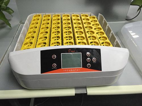 incubators with best price
