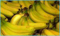 _38701357_bananas300.jpg