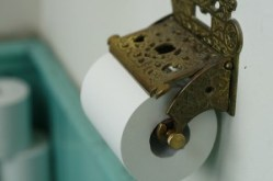 BPA in Recycled toilet paper leaches into water