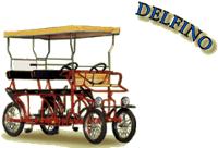 Delfino surrey