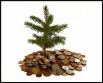 money around a tree