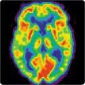 Neuroscience supports natural parenting