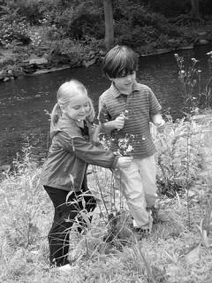 Avoid Arrest:  Don't Pick the Wildflowers!