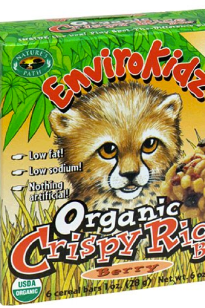 Organic Snacks Kids Love:  Nature's Path Cereals and Bars