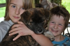 Social and Emotional Development:  Kids Benefit from Pets