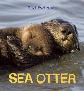 Environmental Children's Non-Fiction:  Sea Otter