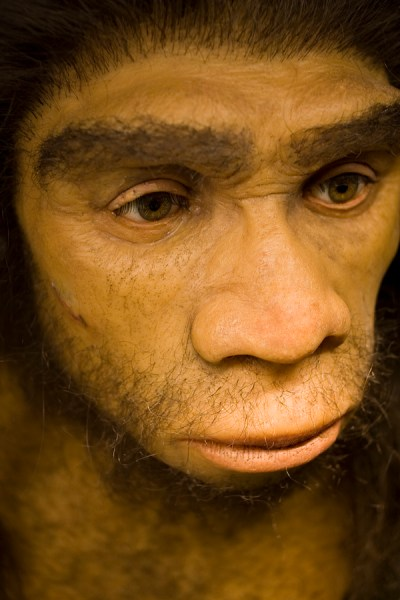 """He could take a tooth and tell when that tooth's owner stopped nursing. His colleague Tanya Smith, who studies human evolution at Harvard, knew just the tooth to test first. """"It's a first molar tooth from a Neanderthal from a site in Belgium called Scladina,"""" Smith says. The tooth is 100,000 years old and perfectly preserved. Analyzing the tooth's barium distribution, the researchers determined that this Neanderthal started weaning after about 7 months, and then transitioned to a mixed diet. At 15 months, the barium signal dropped abruptly, as if mother and child had been separated."""