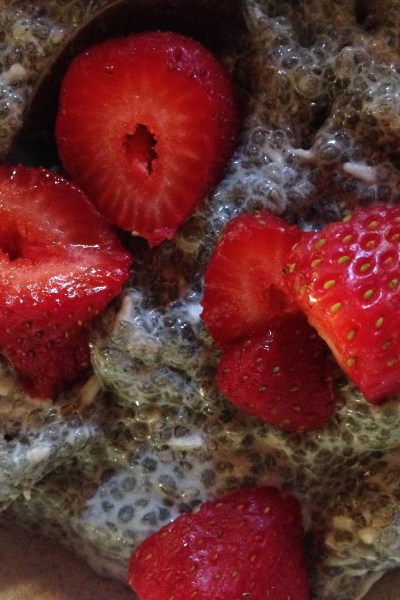 What's for breakfast?  Vegan Chia Seed Pudding Recipe
