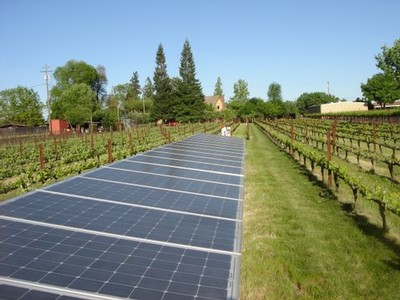Solar panels at Bockish Vineyard