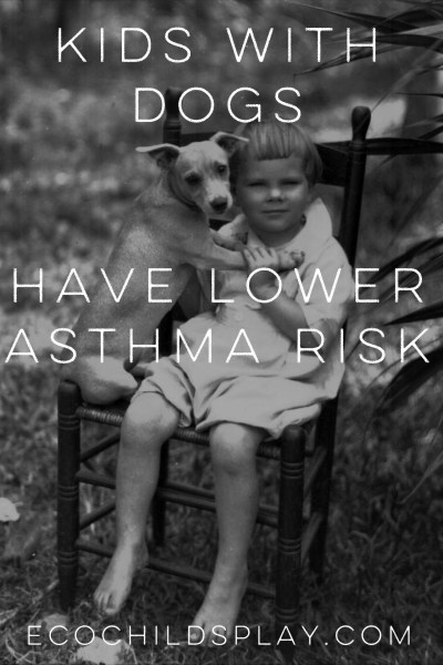 Reduce your child's asthma risk…get a dog (study)
