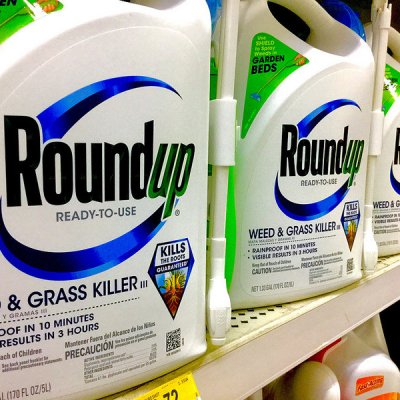 Why We Need to Be Concerned about the Multi-Generational Effects of Glyphosate and Round-Up​
