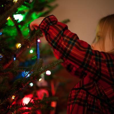 pesticides christmas trees