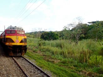 The Panama Railway was the first transcontinental railway line in the world when it was inaugurated in 1955