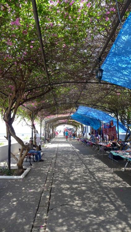 Walking Casco Viejo