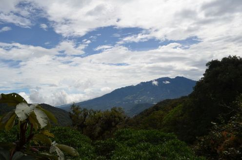 the mountains of Boquete