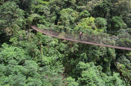 The bridges of Boquete