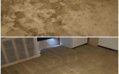 Carpet Cleaning FAQs