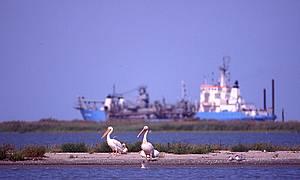 Навігаційні проекти загрожують Дунаю