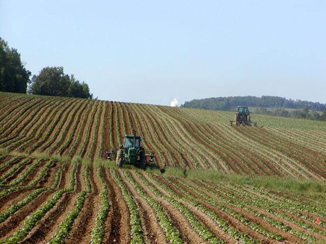 Ambiente, da Commissione Senato ok a ddl fanghi in agricoltura