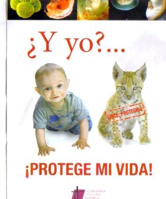 Cartel de la Iglesia en contra del aborto. /N.G.M.