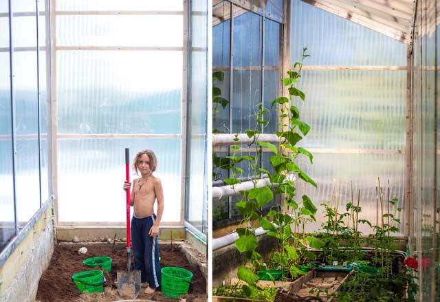 Вегетарий: было — стало. Слева фото сделано 24 февраля, справа, 13 апреля! Прошло 50 дней.