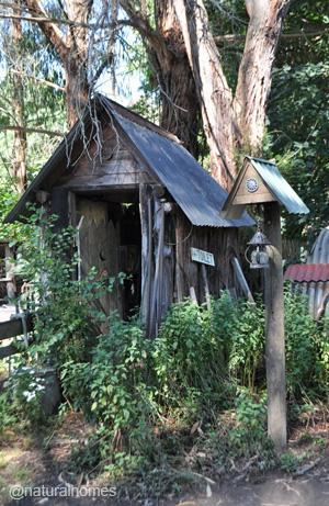 offgrid-jill-redwood6