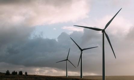 Porozumienie na rzecz rozwoju morskiej energetyki wiatrowej
