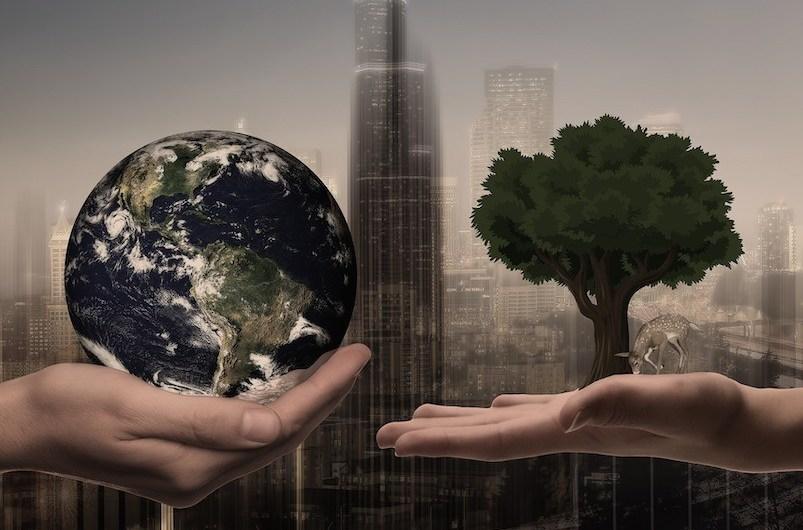 ESG nie tylko dla spółek publicznych